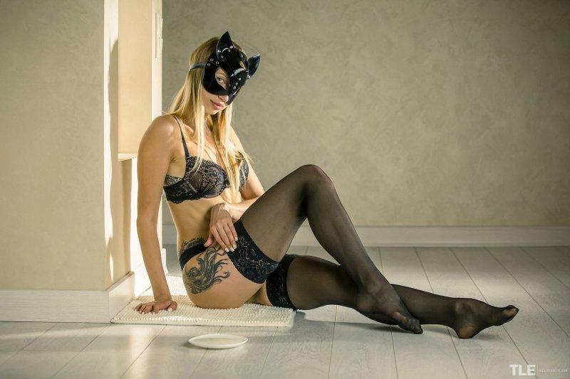 Сексуальная кошечка в чулках и трусиках - фото